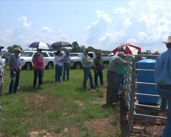 2017 Jackson County Cattlemen's Tour