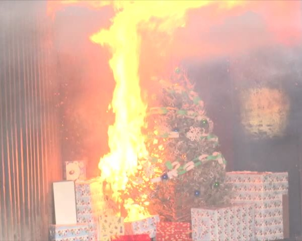 Avoid Fires: Keep Your Holiday From Going Up in Flames