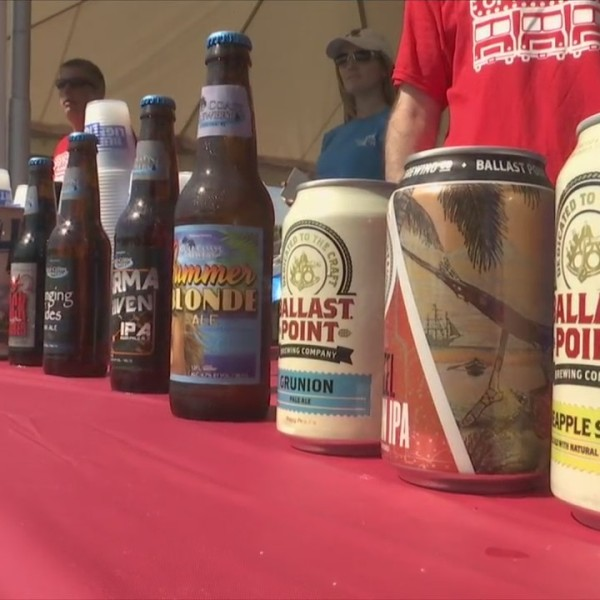 Food and Craft Beer Festival