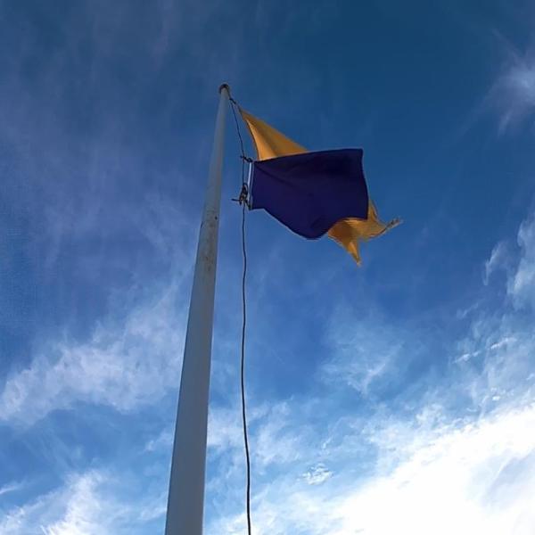 purple flag_1530061732653.jpg-842137442.jpg