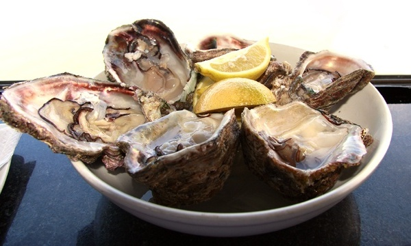 Cold Foods - Oysters_2421927231294551-159532