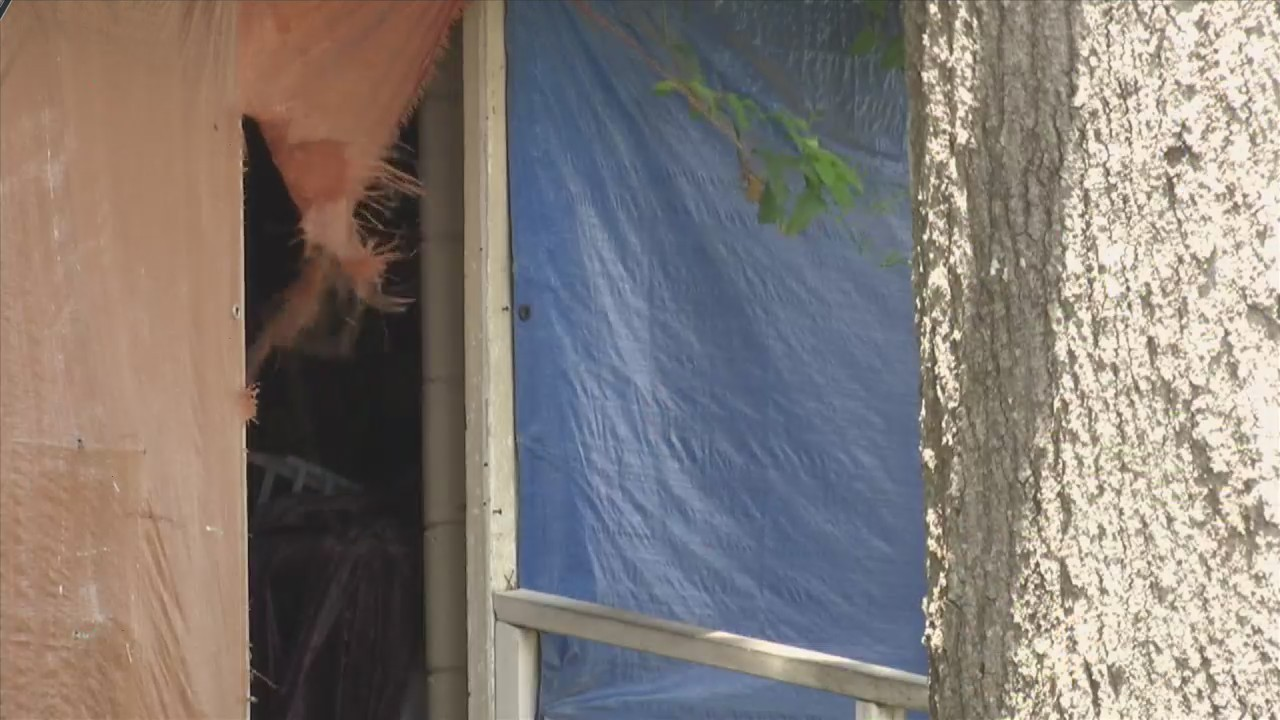 Springfield Mayor Leads Home Removal