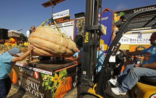 Giant Pumpkin